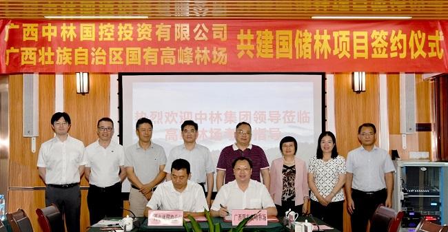 廣西(xi)中林(lin)國控與高峰林(lin)場(chang)簽署共建國儲林(lin)項目合作協議